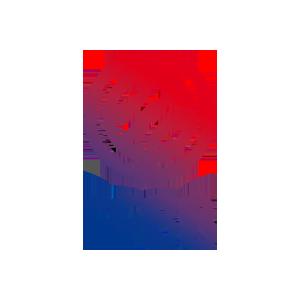 Federación Francesa de Baloncesto