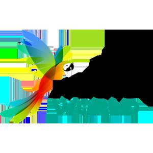 El mundo de los loros