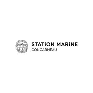 estación marítima de concarneau